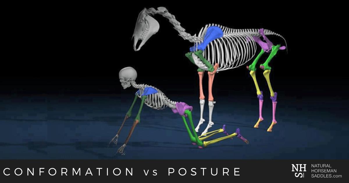 Blog-header-Conformation-vs-posture