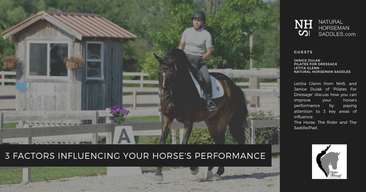 blog-header-3-factors-influencing-your-horses-performance