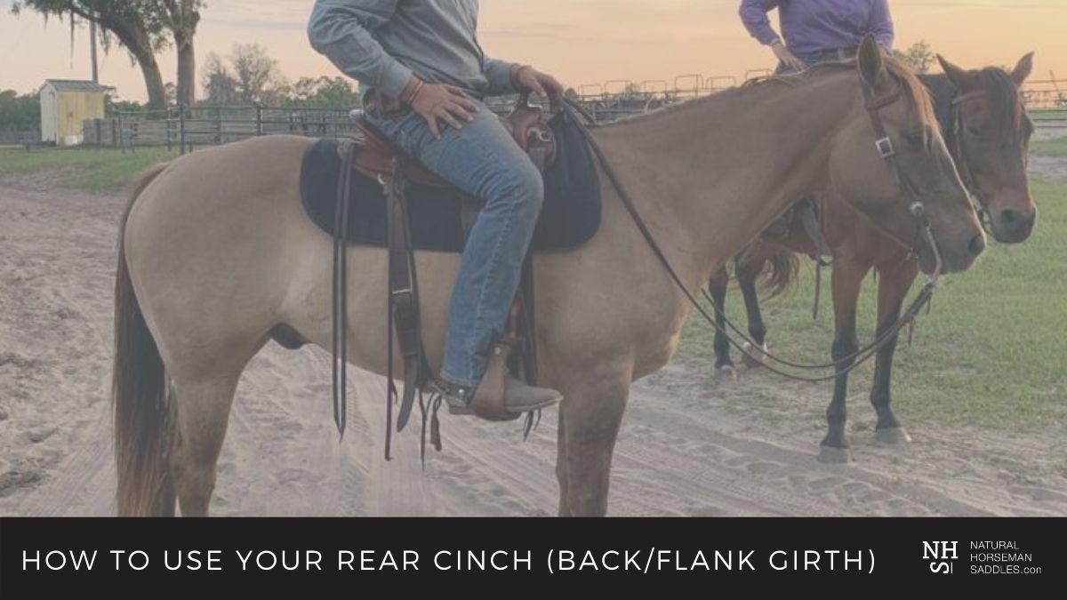 blog header pic back cinch