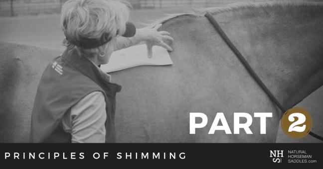 Blog_header_Principles-Of-Shimming-Part-2