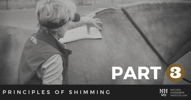 Blog-Header-Principles-of-shimming-part-3
