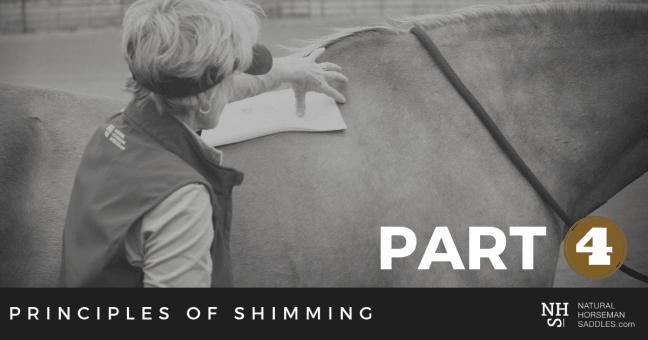 Blog-Header-Principles-of-shimming-part-4