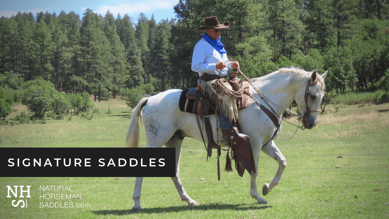 Blog-Header-Signature-Saddles