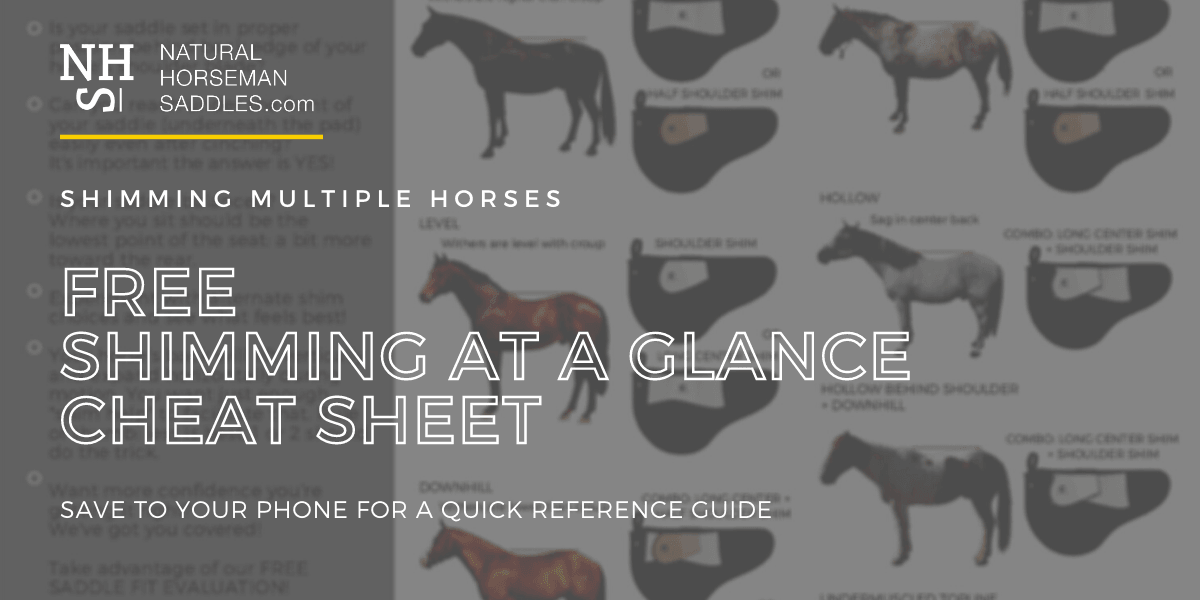 Shimming Saddles At A Glance