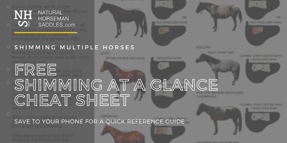 Shimming Saddles At A Glance