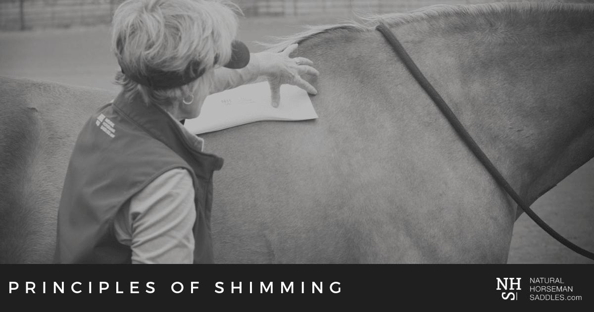 Blog_header_Principles-Of-Shimming-Part-1