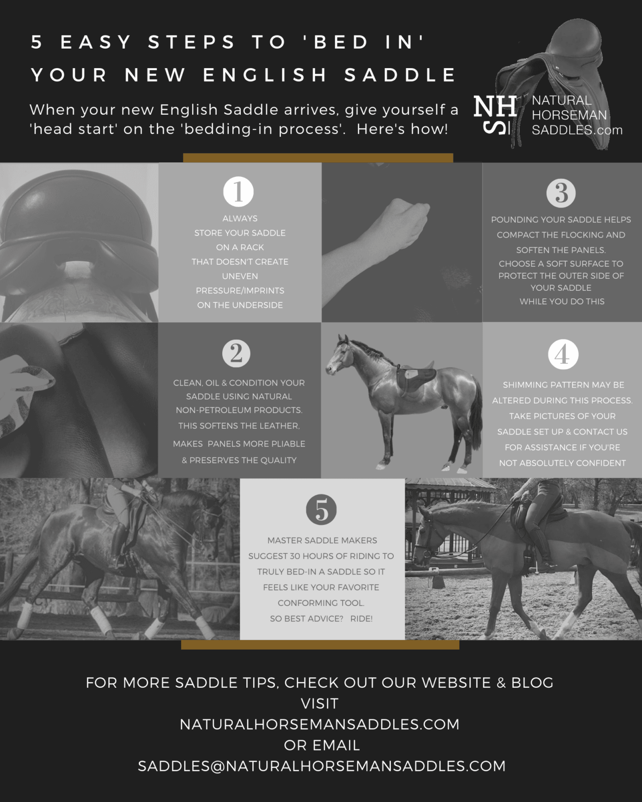 5 Easy Steps to BED IN Your New English Saddle INFOGRAPHIC