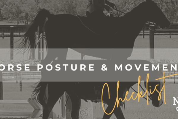 blog-header-horse-posture-and-movement-checklist