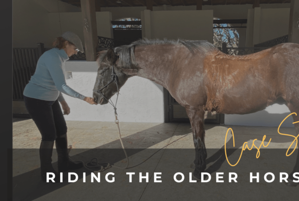 BLOG_HEADER_PIC-RIDING-THE-OLDER-HORSE