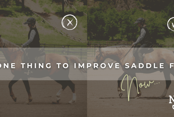 BLOG-HEADER-IMPROVE-SADDLE-FIT