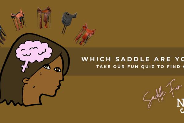 Blog Header Which Saddle Are You Quiz